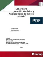 Info lab - preparacion mx.docx
