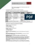 proyecto aps rosario turismoaccesible-130407113843-phpapp02