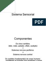 Sistema Sensorial 2014
