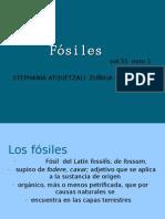 Vol.55 Num.1 Stephania Atquetzali ZuÑiga Contreras