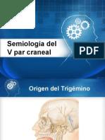 Semiologia Del v Par Craneal
