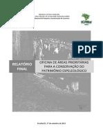 PAN Cavernas São Francisco Relatorio Final Oficina Areas Prioritarias