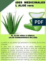 Propiedades Medicinales Del Aloe Vera 2