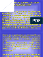 Produccion de Acido Glutamico 1