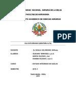 CALICATA BRUNAS.doc