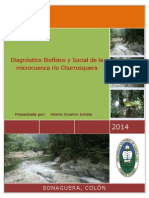 Diagnostico Biofísico y Social de La Microcuenca Río Churrusquera