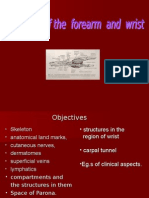 8. Anatomy of Forearm and Wrist.ppt1