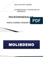 Micro Mineral Es