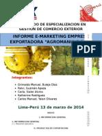 TRABAJO FINAL DE E-MARKETING2.docx