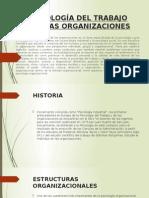 Psicologadeltrabajoydelasorganizaciones 150517160010 Lva1 App6892