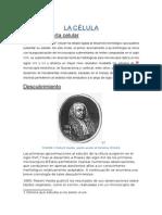 celula (1).docx