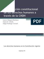 La Protección Constitucional de Los Derechos Humanos a Traves de La CNDH