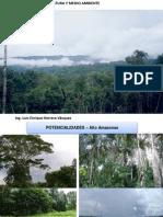 Apicultura y Medioambiente - Alto Amazonas