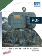 Motores WEG