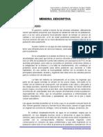 Memoria descriptiva Bajo.doc