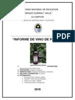 Informe de Vino de Pasas
