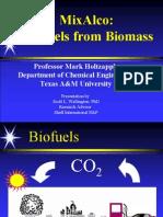 Holtzapple Biomass Fuel Presentation