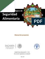 MANUAL_PROYECTOS_PESA.pdf