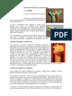 Técnicas Para La Elaboración de Títeres y Marionetas