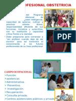 PERFIL PROFESIONAL OBSTETRICIA.pptx