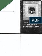Lezama Lima - Imagen y Posibilidad