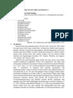 Tinjauan Farmakologi Cabe Jawa (Piper retrofracti L.)