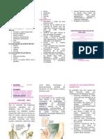 Triptico de Neurologia Diabetica