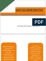 Polirradiculoneuritis y Polineuropatias