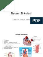 Sistem Sirkulasi.pptx