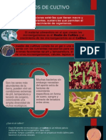cultivo(biologia).pptx