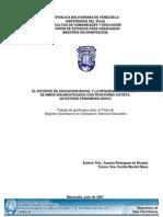 rodriguez_viada_susana_carolina(1).pdf