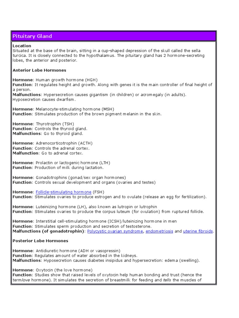 Endocrine System Simple Notes Adrenal Gland Luteinizing Hormone