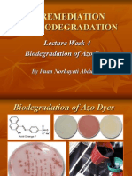 Wk4-Biodegradation of Azo Dyes