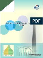 Profil Kesehatan Indonesia 2006