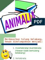 Powerpoint ANIMALIA Vertebrata