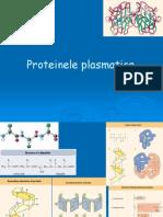 4.Proteine metabolism