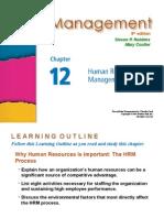 Management Robbins PPT12