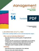 Management Robbins PPT14