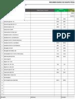 RDE Resumen Diario de Equipo actualizado al 26-12-13.xlsx
