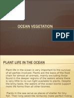 Ocean Vegetation