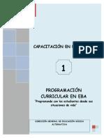 PROGRAMACION CURRICULAR EN EBA.pdf