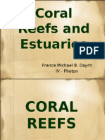 Coral Reefs and Estuaries 2