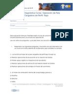 Prueba de Diagnóstico Operación de Pala Cargadora.