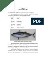 Tinjauan Pustaka Ikan Cakalang
