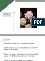 Carcinogénesis 2014