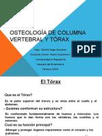 Osteología de Columna Vertebral y Tórax