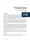 Using Digital Watermarking for Copyright Protection