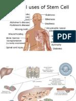 Bahan Buat Presentasi Stem Cell DM