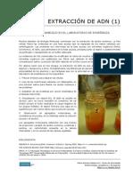 68 Extraccion de ADN (Experimento Ambiguo)