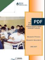 One 2007 Informe Final